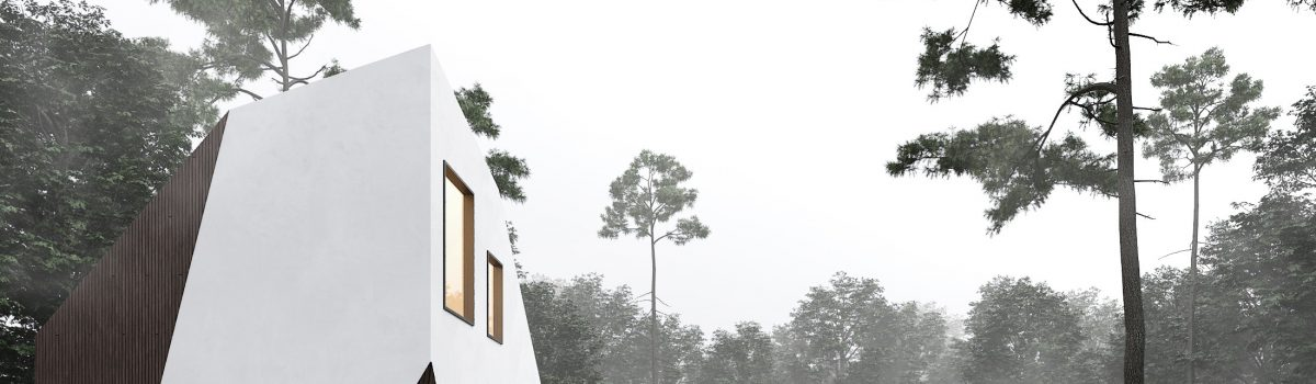 building in the woods no.3