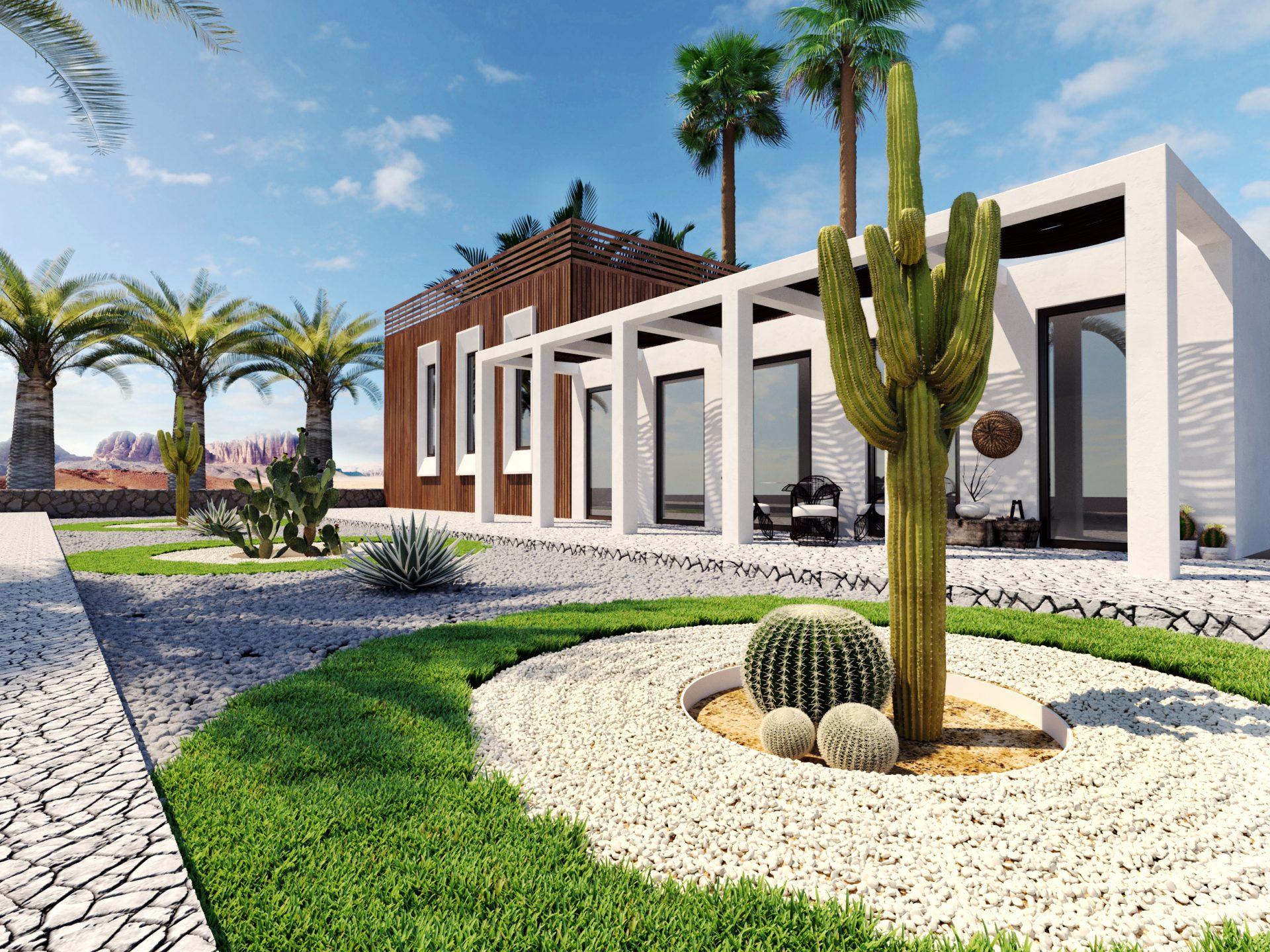 3d render of desert garden